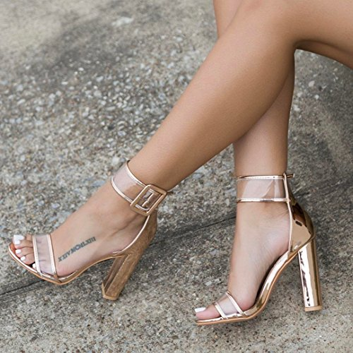 Womens-Sexy-Ankle-Strap-Sandal-Transparent-Open-Toe-Chunky-High-Heel-Shoes-US-12-Gold-0-1