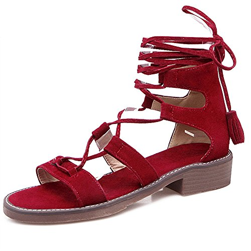 Dahanyi-Stylish-2018-Summer-New-Arrival-Women-Shoes-Square-Heel-Cross-Tied-Casual-Ladies-Sandals-Low-Heels-Shoes-Big-Size-34-43-0